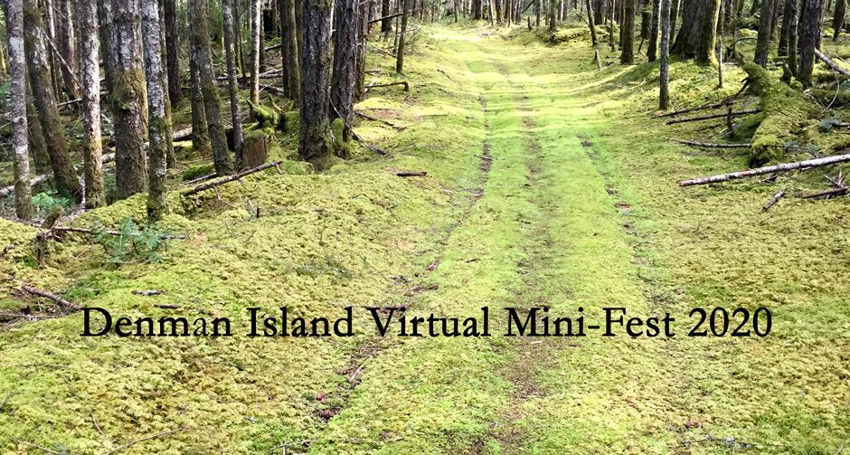 Virtual Mini-Fest
